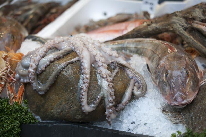 The Wild sea bass for sale at Borough Market, London. Wild sea bass for sale at Borough Market, London stock photos