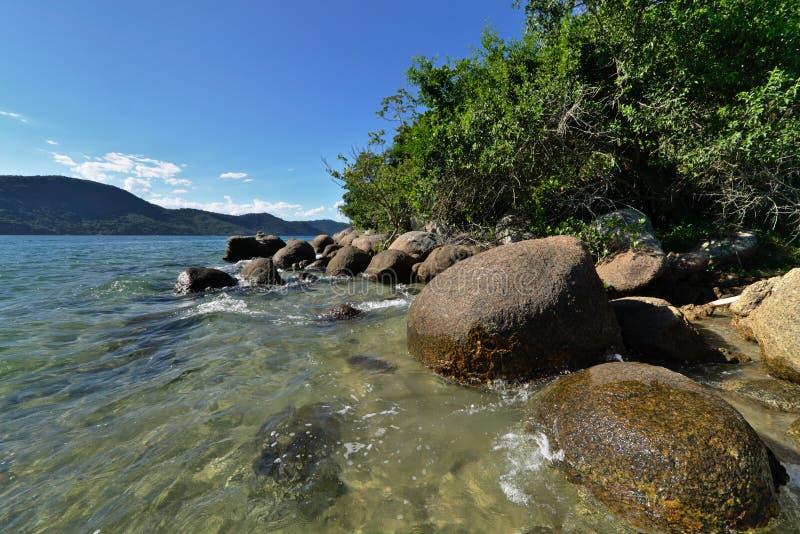 Wild seashore stock photo