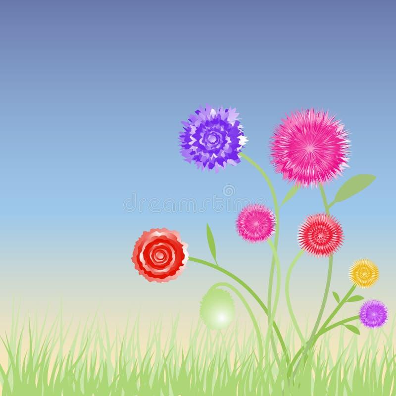 Wild spring garden flowers. Wild spring flower in a garden with details vector illustration