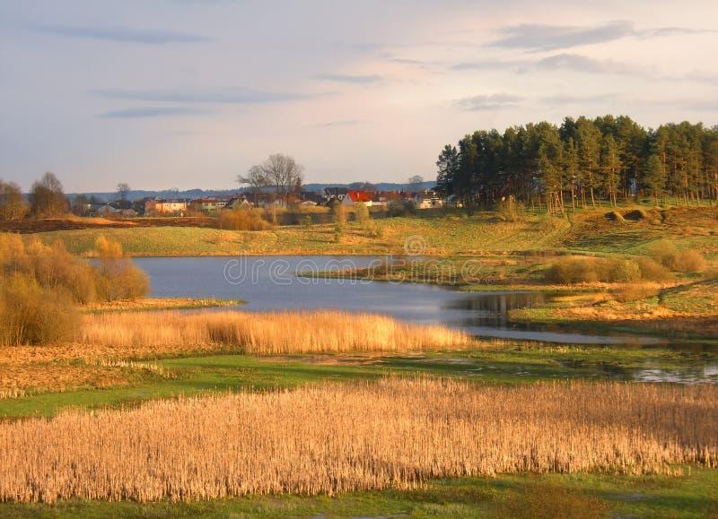 Wild spring landscape royalty free stock image