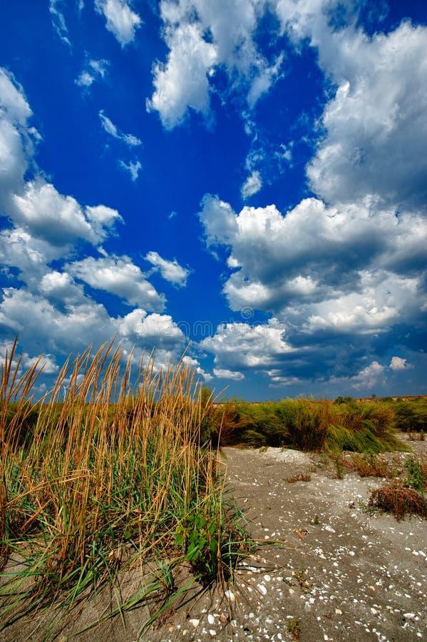 Wild strand, hdr beeld stock foto's