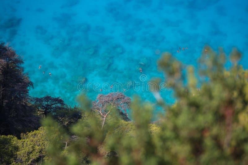 Wild strand met duidelijk blauw water stock afbeelding