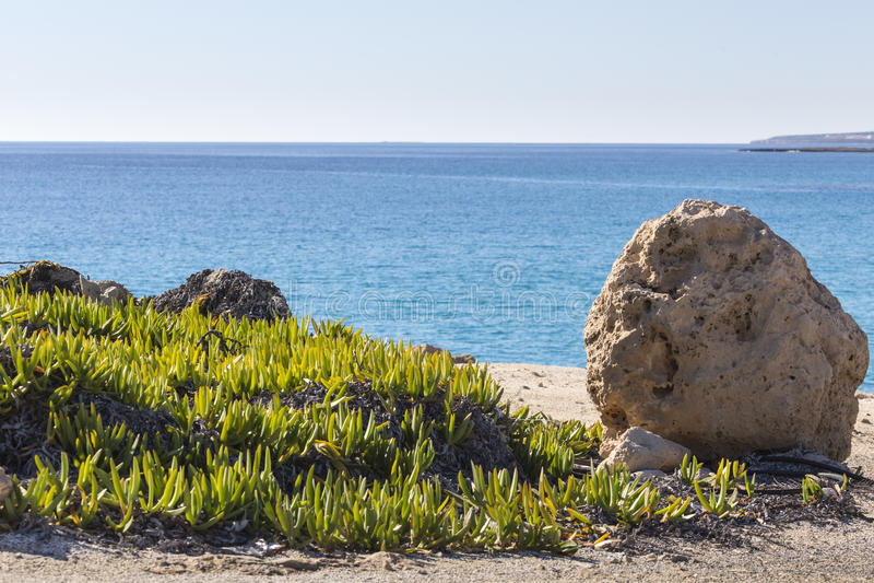 Wild strand met rotsen in water royalty-vrije stock foto's