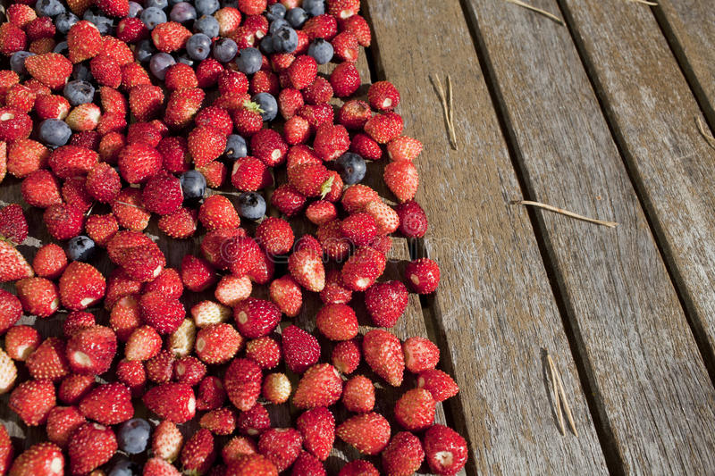 Download Wild Strawberry And Bilberry  On A Table Stock Photo - Image: 26628568