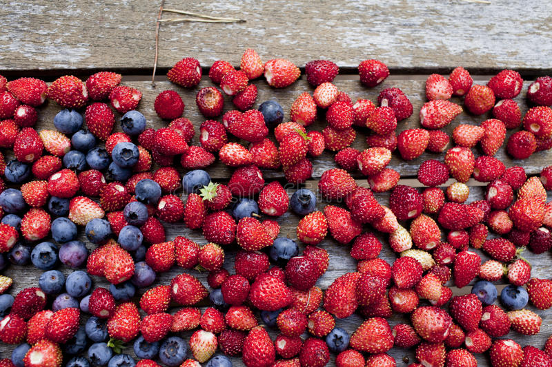 Download Wild Strawberry And Bilberry On A  Table Stock Photo - Image: 26628608