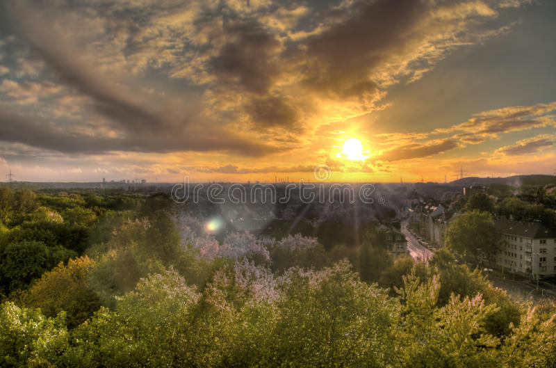 Download Wild Sunset Royalty Free Stock Photography - Image: 16831007