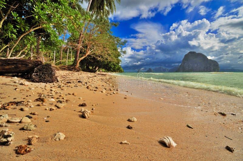 Wild Tropisch Strand stock foto