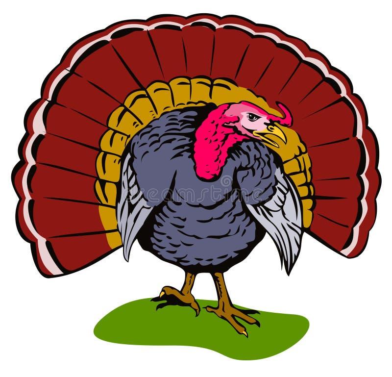 Wild Turkije stock illustratie