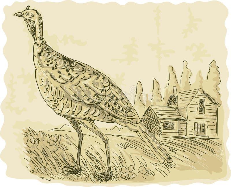 Wild Turkije met huis royalty-vrije illustratie