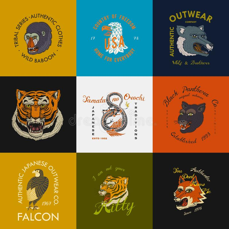 Wild vintage animals. Logo for t-shirt. Asian Tiger, Chinese Dragon, panther, fox, Falcon, Monkey. Translation The name. Of the Japanese mythological dragon vector illustration