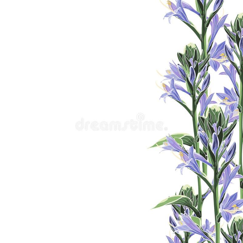 Wild violet lilies bels elegant card. A spring decorative bouquet. Small floral garland. Vector illustration royalty free illustration