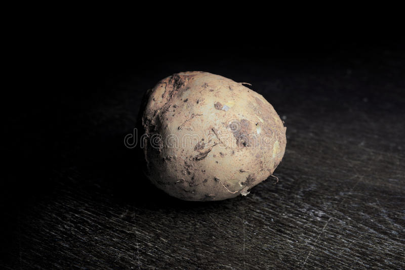 wild yam on wooden table with dark light stock image