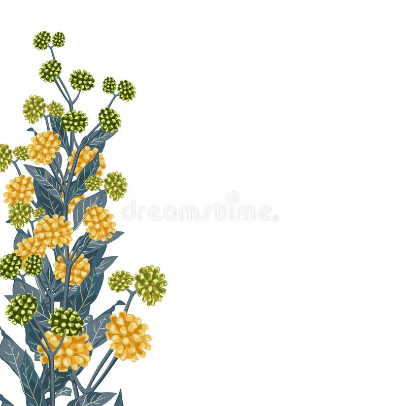 Wild yellow flowers with blue leaves. A spring decorative bouquet. Small floral garland. Vector illustration royalty free illustration