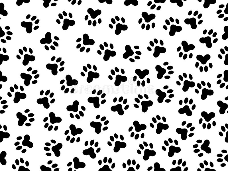 Download Wildcat foils stock vector. Image of foot, fabric, caracal - 8566588