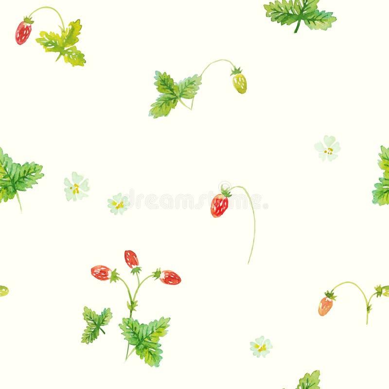 Wilde aardbei Waterverf vector naadloos patroon stock illustratie
