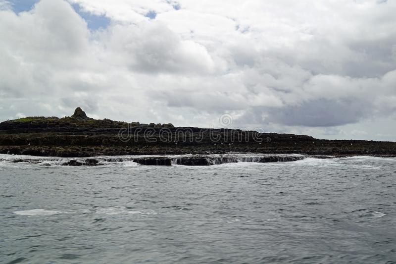 Wilde Atlantische Manierrondvaart op de Klippen van Moher stock foto