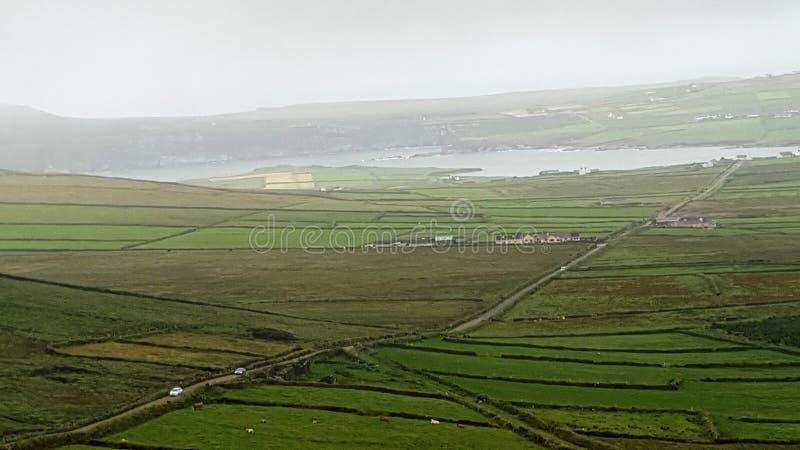 Wilde atlantische Weise in Irland lizenzfreie stockbilder