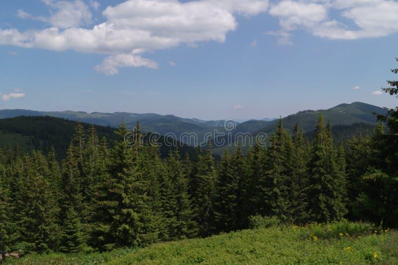 Wilde bergen stock afbeelding