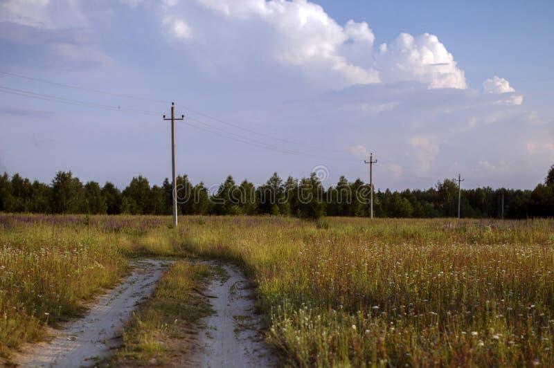Wilde Beschaffenheit von Russland im Sommer stockbilder