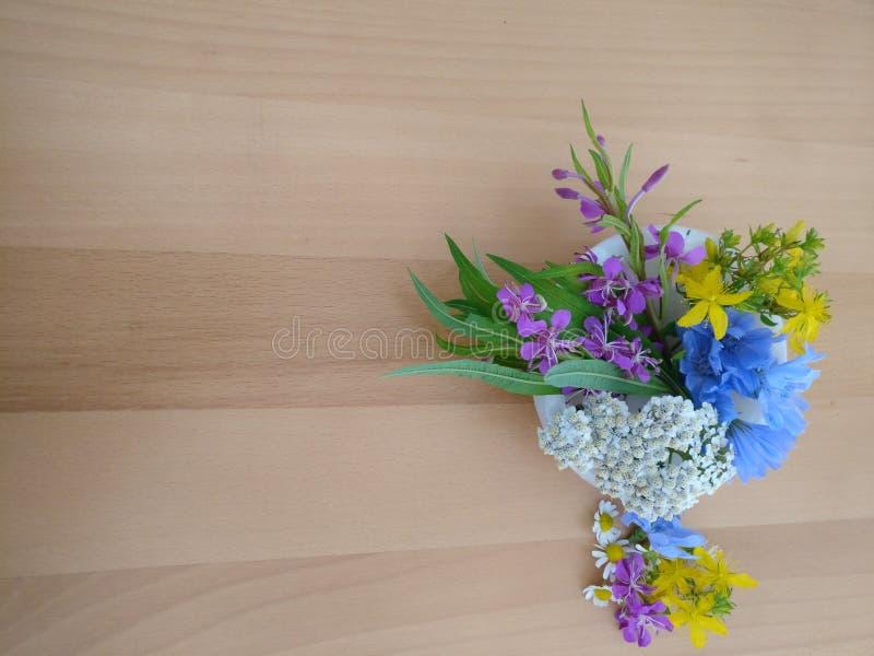 Wilde Blüten in Europa für Tee 3 lizenzfreies stockbild