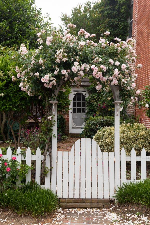 Wilde bloemen die over witte piketomheining groeien stock foto
