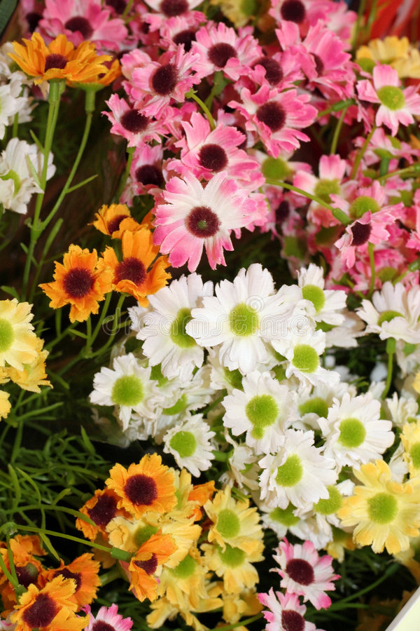 Wilde Blumen stockbild