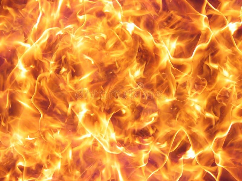 Wilde brandvlammen stock afbeelding