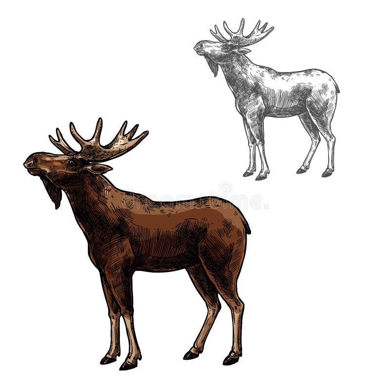 Wilde dier geïsoleerde pictogram van de elanden het vectorschets vector illustratie