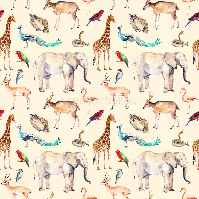 Wilde dieren - dierentuin, het wild Naadloos patroon watercolor royalty-vrije illustratie