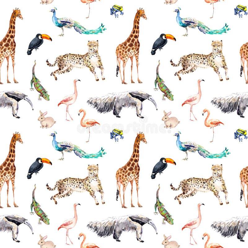 Wilde dieren en vogels - dierentuin, het wild - giraf, jachtluipaard, toekan, flamingo, andere Naadloos patroon watercolor stock illustratie