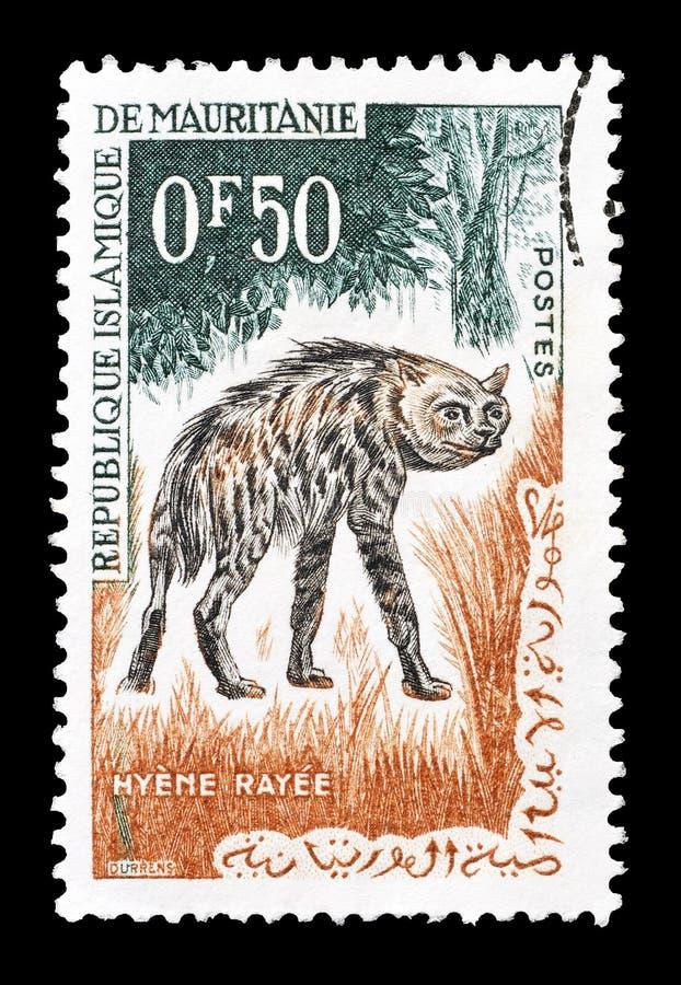 Wilde dieren op postzegels royalty-vrije stock afbeeldingen