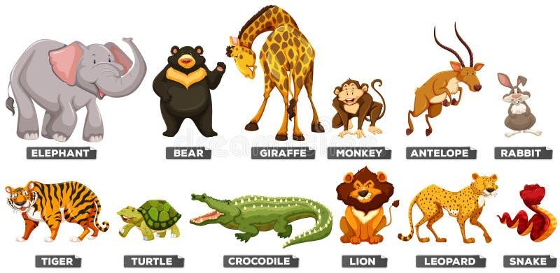 Wilde dieren in vele types vector illustratie