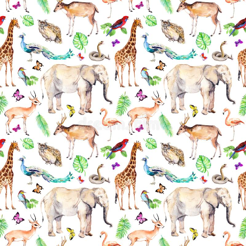 Wilde dieren, vogels in bos - dierentuin, het wild Naadloos dierlijk patroon watercolor stock illustratie