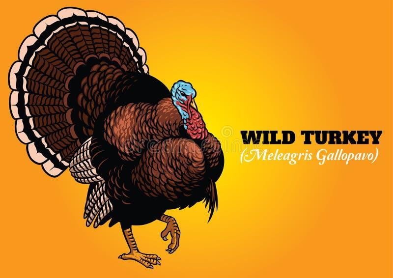 Wilde in hand de tekeningsstijl van Turkije royalty-vrije illustratie