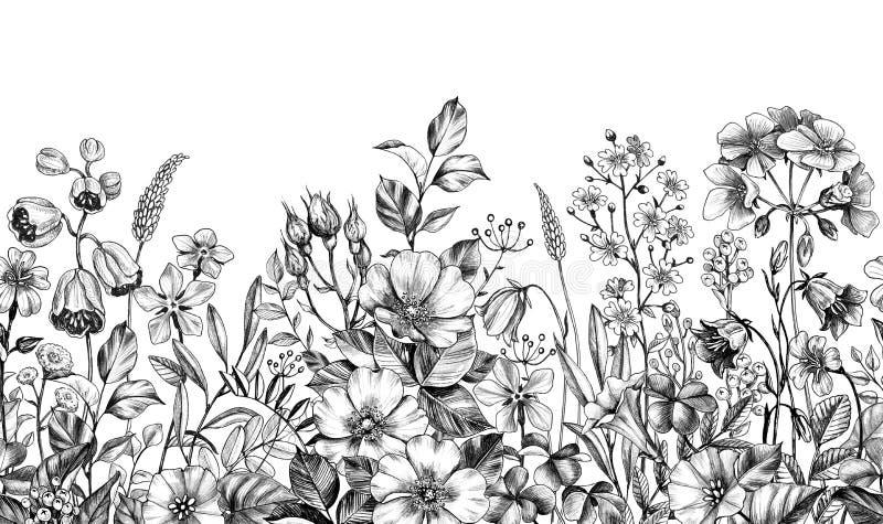 Wilde Installaties en Bloemen Naadloze Grens royalty-vrije illustratie