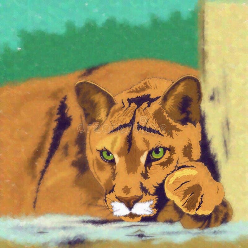 Wilde katten cougar stock illustratie