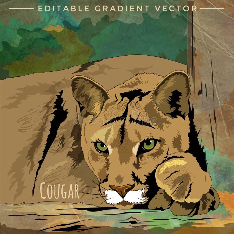 Wilde katten cougar royalty-vrije illustratie