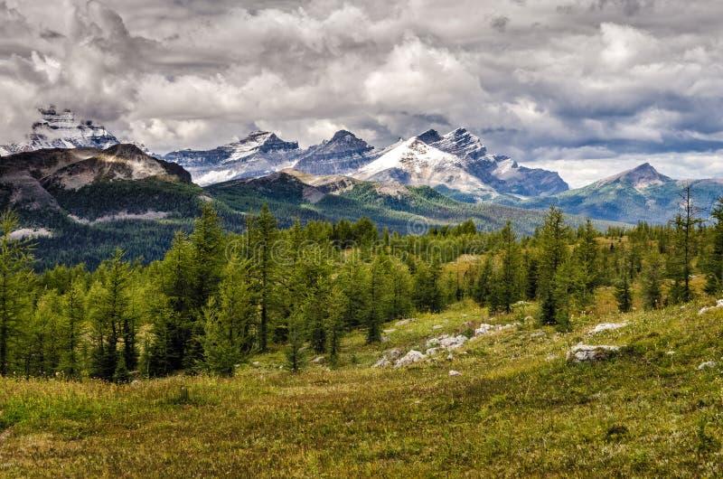 Wilde Landschaftsgebirgszugansicht, Nationalpark Banffs, Kanada stockfoto
