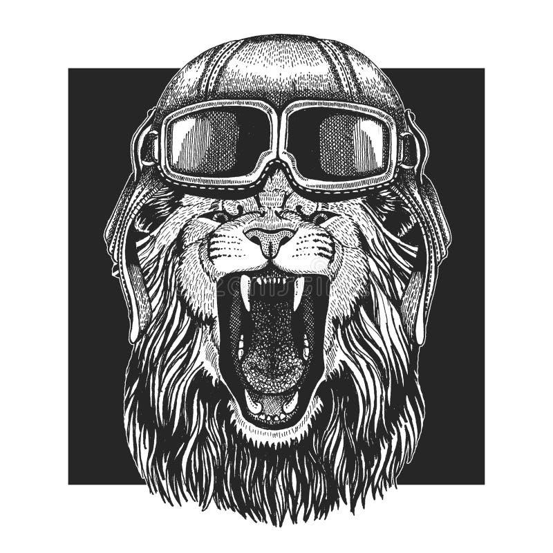 Wilde leeuw die vliegeniershoed dragen Druk voor kinderenkleren, T-stuk, t-shirt Proef wild dier royalty-vrije illustratie