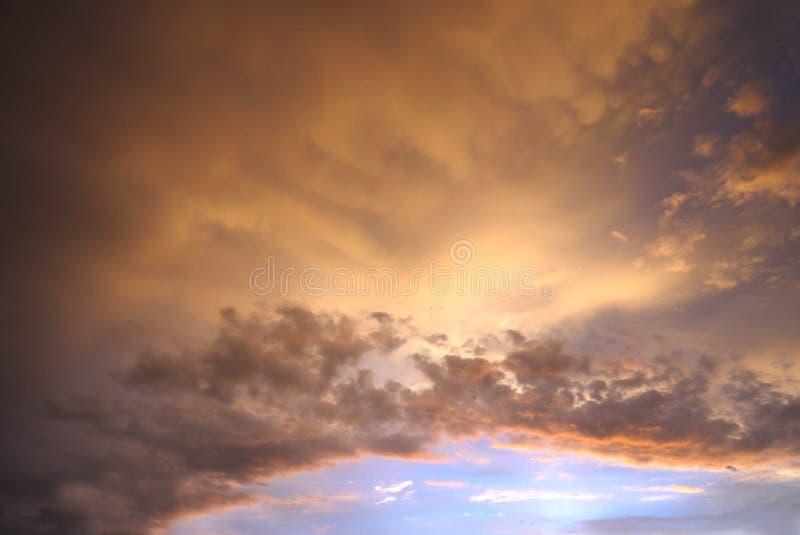 wilde marjoleinhemel vóór de regen stock fotografie
