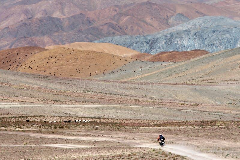 Wilde Mongoolse weg royalty-vrije stock afbeeldingen