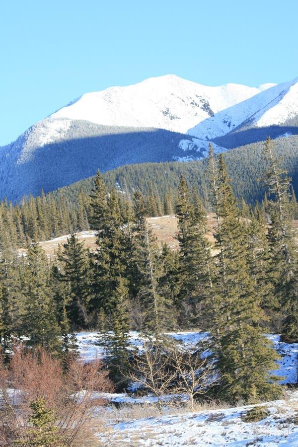 Wilde Natur in kanadischen Rockies stockfoto