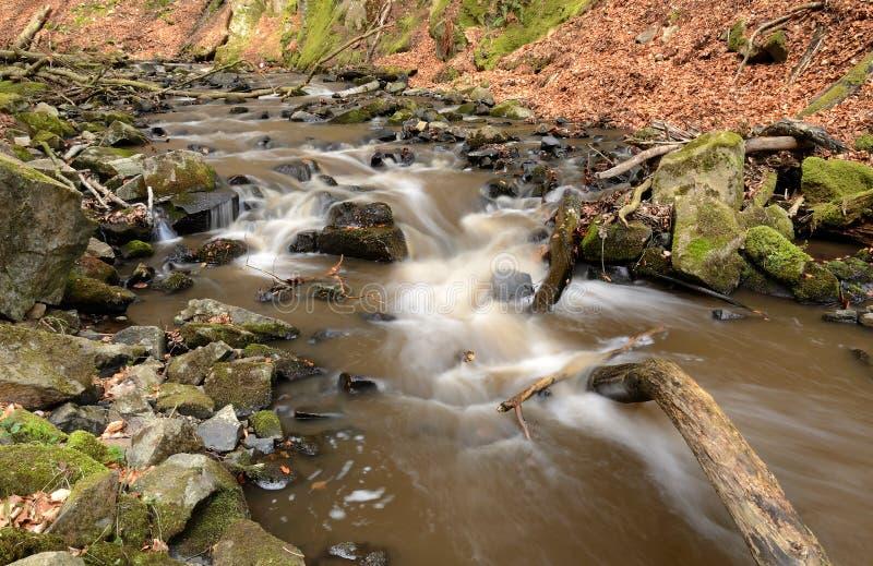 Wilde rivier in Zweeds bos stock afbeelding