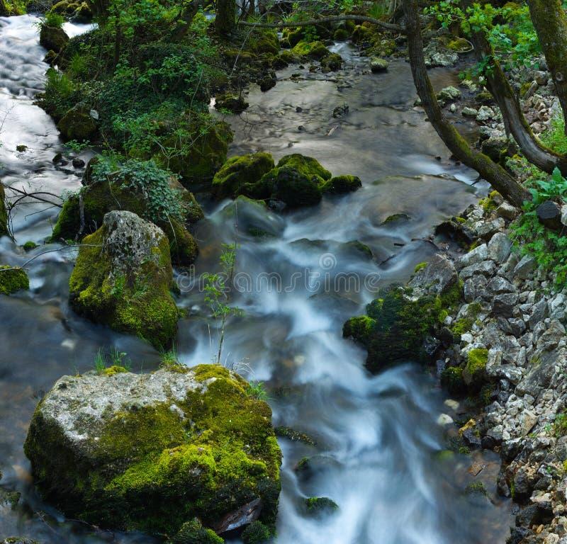Wilde stroom met groene stenen stock afbeelding