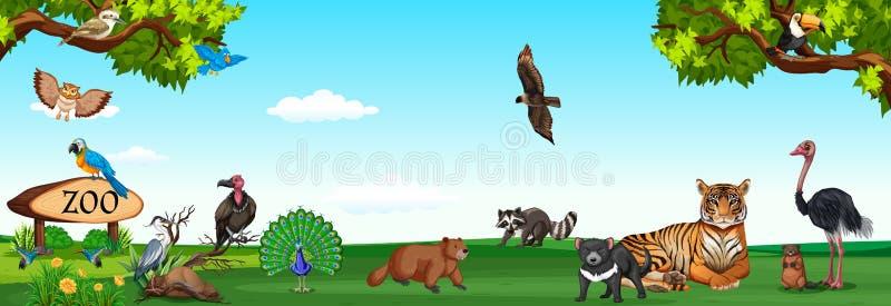 Wilde Tiere im Zoo vektor abbildung