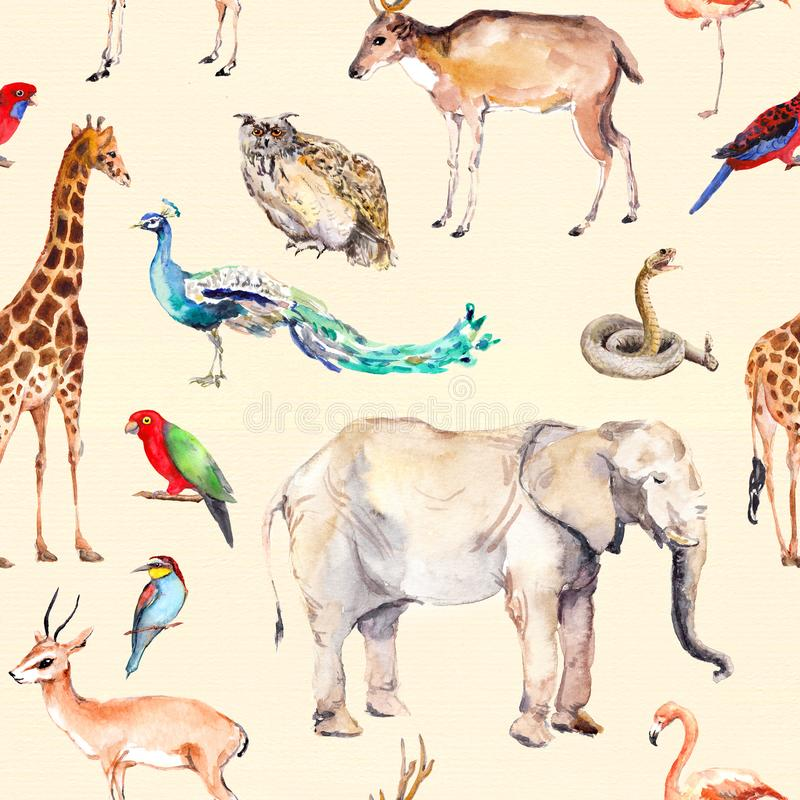 Wilde Tiere und Vögel - Zoo, wild lebende Tiere - Antilope, Schlange, Rotwild, Flamingo, anderer Wiederholen des Musters watercol vektor abbildung