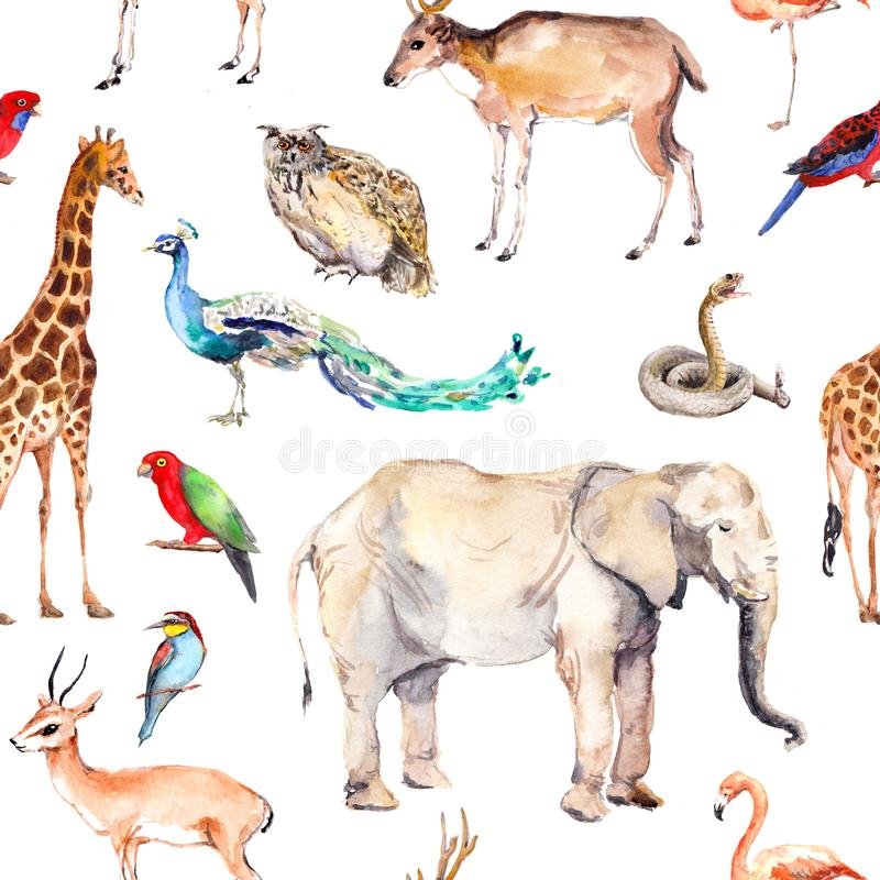 Wilde Tiere und Vögel - Zoo, wild lebende Tiere - Elefant, Giraffe, Rotwild, Eule, Papagei, anderer Nahtloses Muster watercolor vektor abbildung