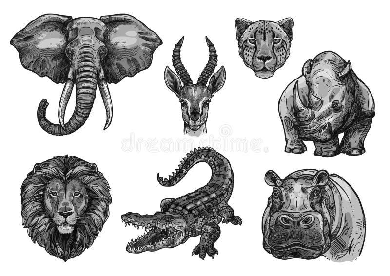 Wilde Tiere vector Skizzenikonen für afrikanischen Zoo lizenzfreie abbildung