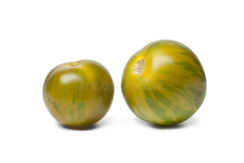Wilde Tomaten lizenzfreie stockbilder