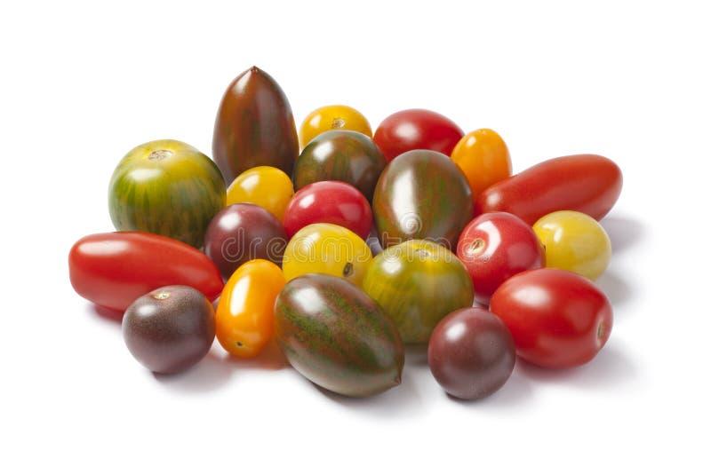 Wilde Tomaten lizenzfreies stockfoto